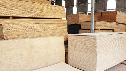 Ván gỗ dán